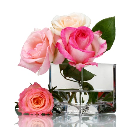 Beautiful roses in transparent vase isolated on white