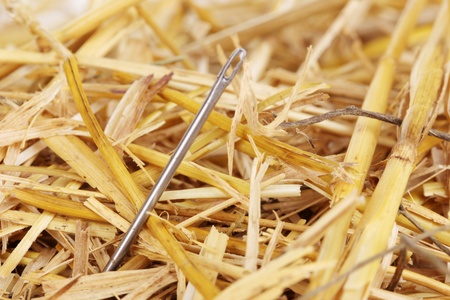 Needle in a haystack close-upの写真素材