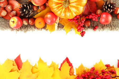 Photo for Beautiful autumn composition, isolated on white - Royalty Free Image
