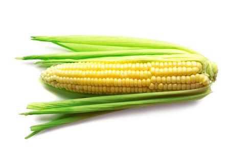 Photo for Fresh corn on cob isolated on white - Royalty Free Image