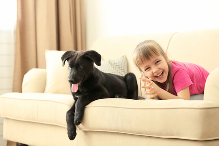 Little cute girl with puppy on sofa at home