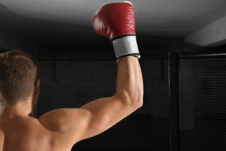 Foto de Handsome trained boxer in gym - Imagen libre de derechos