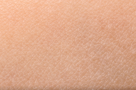 Photo pour Texture of human skin, closeup - image libre de droit