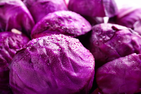 Photo for Ripe red cabbages with water drops, closeup - Royalty Free Image