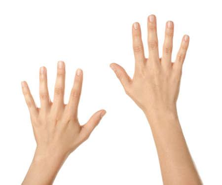 Photo pour Beautiful female hands on white background - image libre de droit