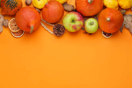 Photo for Autumn composition with pumpkins on color background - Royalty Free Image