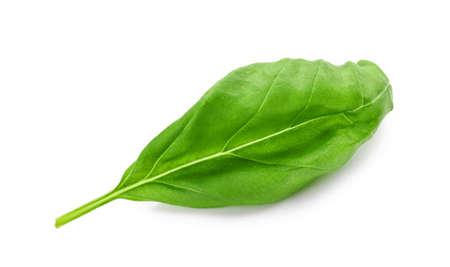 Photo pour Fresh green basil leaf isolated on white - image libre de droit