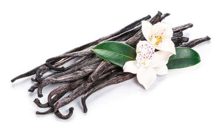 Photo for Aromatic vanilla sticks on white background - Royalty Free Image