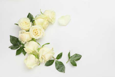 Photo pour Beautiful roses on white background - image libre de droit