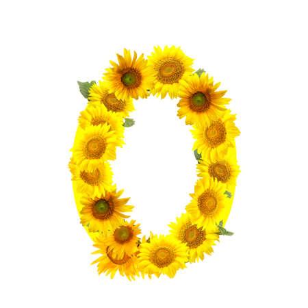 Foto de Figure 0 made of beautiful sunflowers on white background - Imagen libre de derechos
