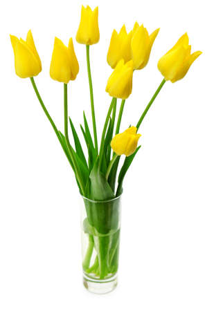 Bouquet of yellow tulips in a vase isolated on white background.