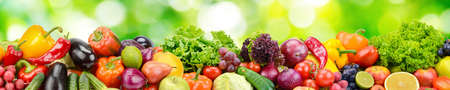 Foto de Panorama of fresh vegetables and fruits on natural blurred background of green leaves. - Imagen libre de derechos