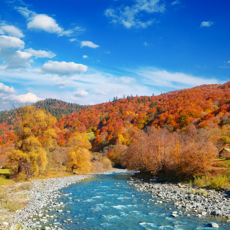 Photo for Bright autumn landscape valley mountain river. - Royalty Free Image