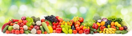 Photo pour Panoramic photo multi-colored fruits and vegetables on green blurred background - image libre de droit