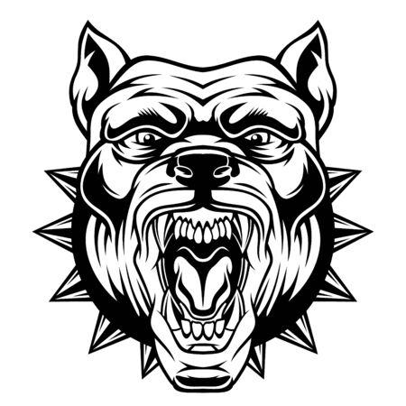 Illustration pour Angry pitbull head. - image libre de droit