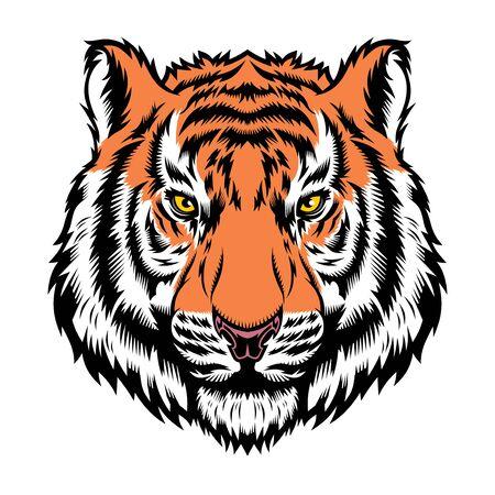 Illustration for Tiger, wild big cat head. - Royalty Free Image