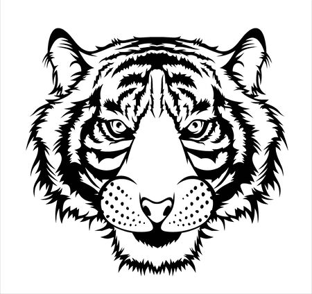 Illustration for Illustration of Tiger, wild big cat head. - Royalty Free Image