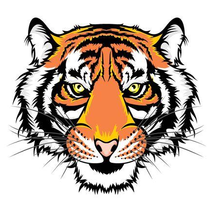 Illustration pour Illustration of Tiger, wild big cat head. - image libre de droit