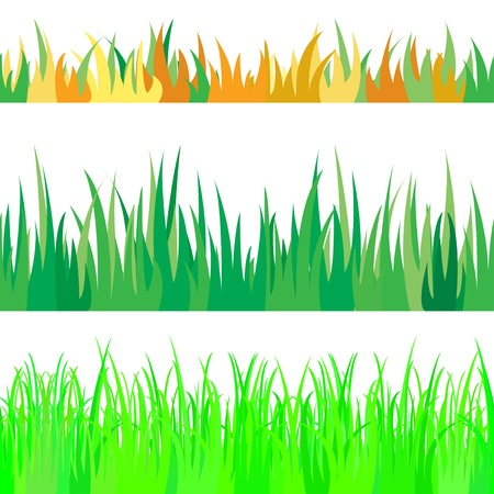 illustration the set of seamless the grass