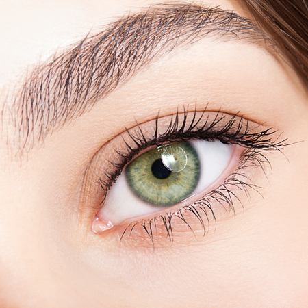 Foto de Closeup shot of female green pistachio colour eye  with day makeup - Imagen libre de derechos