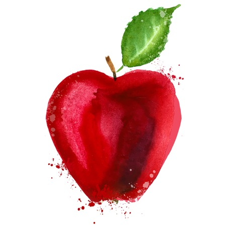 watercolor. Red Apple on a white background. vector illustration