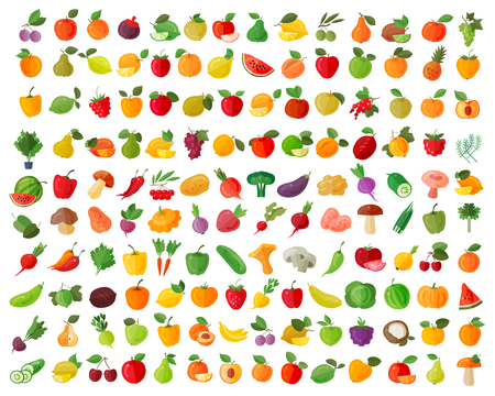fruits and vegetables on a white background. vector illustrationのイラスト素材