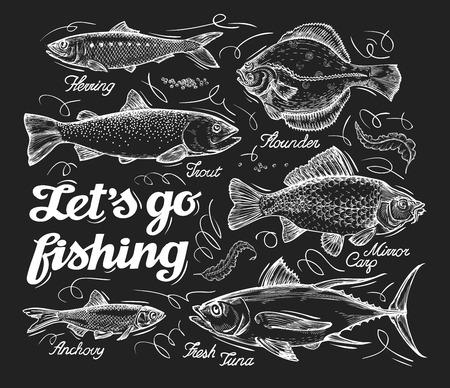 Illustration pour different species of fish sketch. illustration - image libre de droit