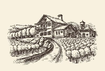 Farm landscape. Hand drawn vineyard or agriculture. Vintage sketch vector illustration