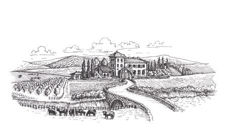 Farm, agriculture or vineyards sketch