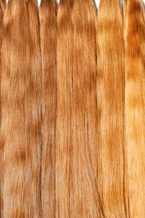 Photo for Natural shiny healthy human hair bundles in light wheat color for Hair extension wigs. Vertical image, close-up, copy space. - Royalty Free Image