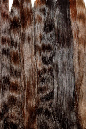 Photo for Bundles of natural shiny healthy human hair in various chocolate shades for extensions are used in the beauty industry. Vertical image, copy space. - Royalty Free Image