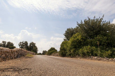 Foto per Countryside near the medieval white village of Ostuni - Immagine Royalty Free