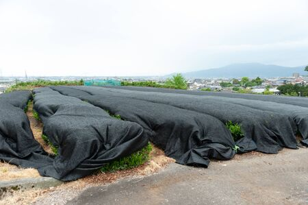Photo pour Baron Screen - Screen for shading: Used in tea plantations to protect the leaves against the winds and strong sunlight. Background aerial view of Fuji city, Japan. - image libre de droit