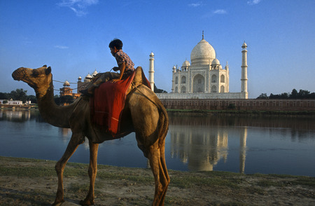 Agra, Uttar Pradesh, India. Camel and Indian boy beside the river at the Taj Mahal in Agra. An Indian boy with his camel rides on the banks of the Yamuna River with the Taj Mahal in the background. Visiting India's most famous destination, the Taj Mahal i