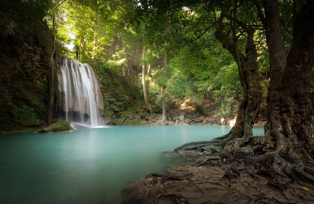 Foto de Sunlight beams and rays shine through leaves of trees in tropical rainforest park in Thailand with beautiful waterfall falling in clear pond and old big tree on foreground - Imagen libre de derechos