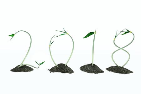 2018 green garden