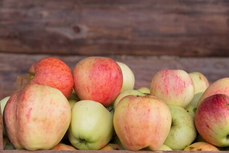 Photo for Ripe apples lie on a background of a wooden wall. - Royalty Free Image