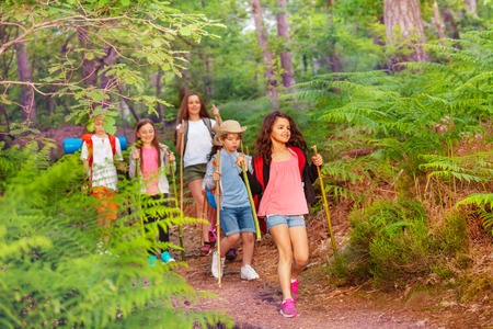 Photo pour Group of kids walking in the forest on school summer activity one after another with backpacks - image libre de droit