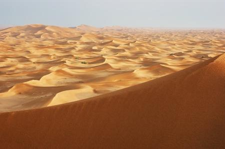 sand dunes of the arabian desert at sunset