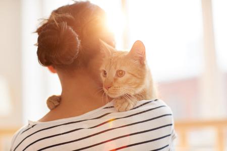 Photo pour Ginger Cat Embracing Owner - image libre de droit