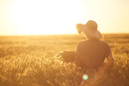 Photo for Back view portrait of young woman walking across golden field holding heap of rye and wearing straw hat lit by sunset light, copy space - Royalty Free Image