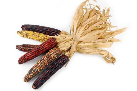 Foto für Cob corn Indian isolated on white - Lizenzfreies Bild
