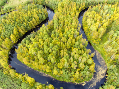 Aerial view of river bends in wild forest