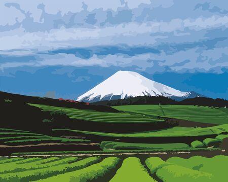 Illustration pour Green tea fields and Mount Fuji - image libre de droit