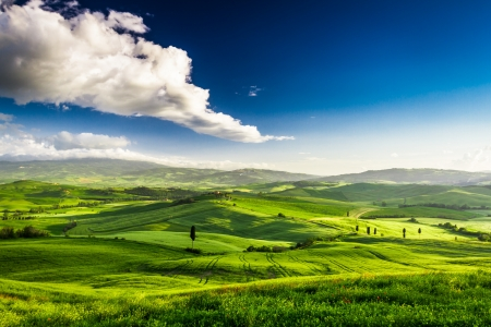 Photo pour Beautiful view of the green valley at sunset, Tuscany - image libre de droit