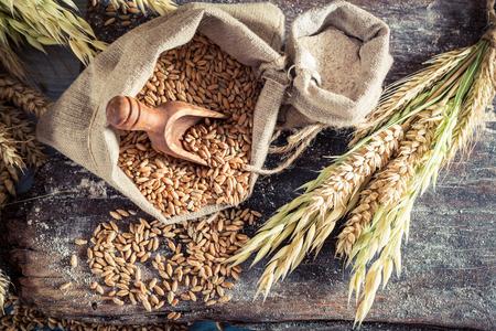 Foto de Healthy ingredients for rolls and bread with whole grains - Imagen libre de derechos