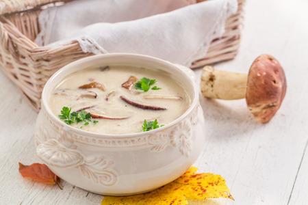 Photo pour Tasty boletus cream with mushrooms and parsley - image libre de droit