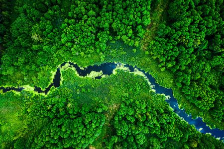 Photo for Amazing blooming algae on green river, aerial view - Royalty Free Image