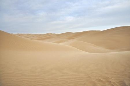Endless rolling sand dunes in scenic desert