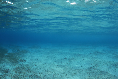 Shallow underwater sea floor void of fish or reef life with vanishing visibility into deep blue darkness at Cozumel, Mexico